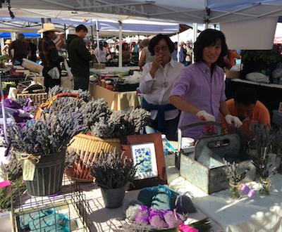 Lavender farmers market Santa Fe Wolfe.JPG