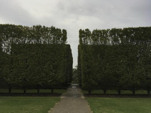 Irwin_garden_Dia_Beacon-Wolfe-photo.jpg